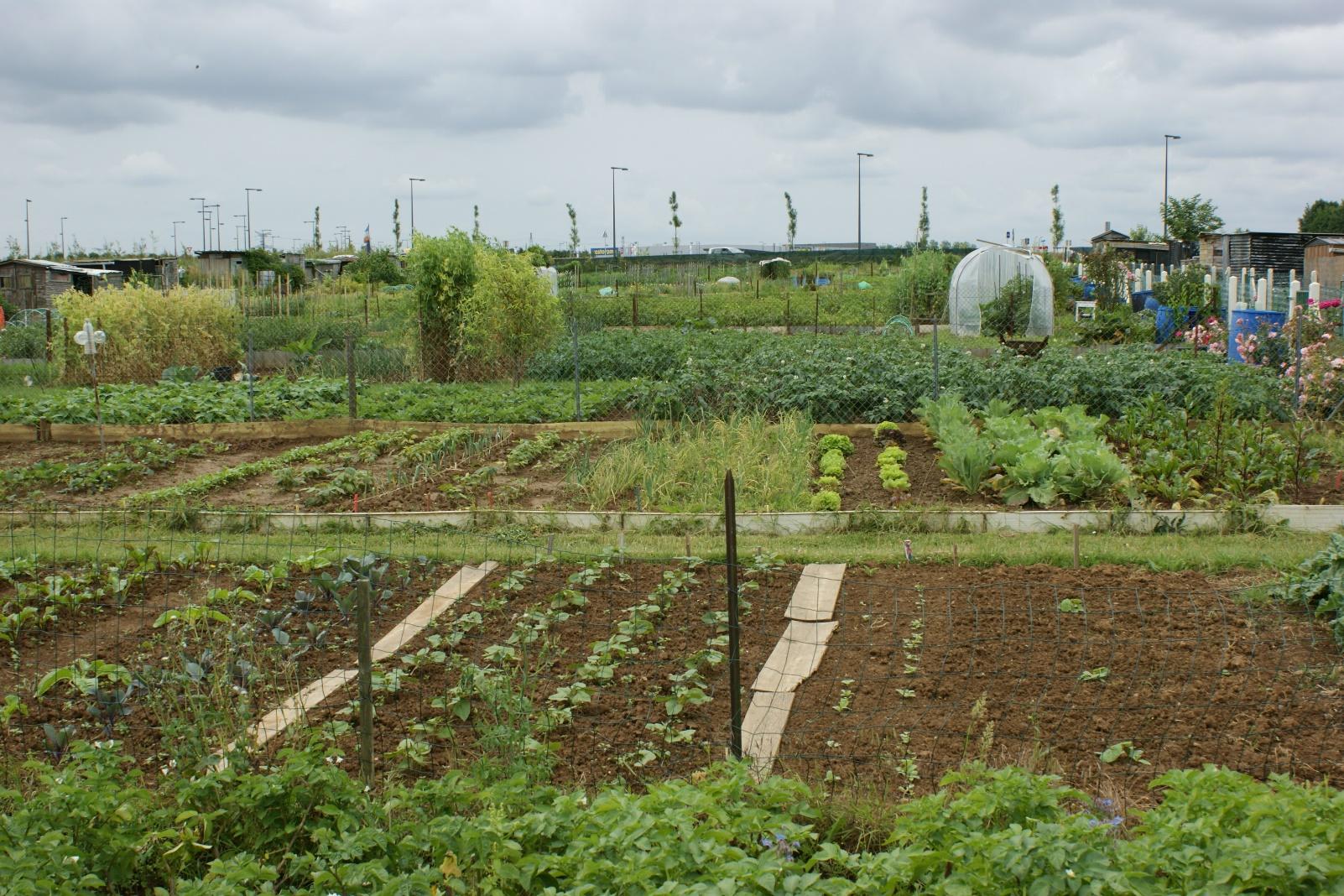 Jardins familiaux une parcelle de jardin disponible for Jardin familiaux