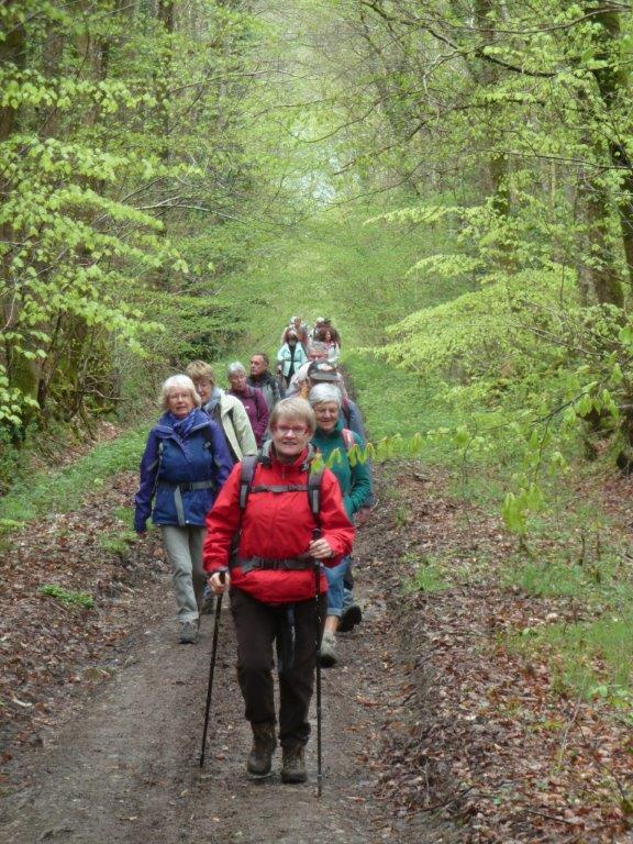 La randonnée du 26 avril à Planquery