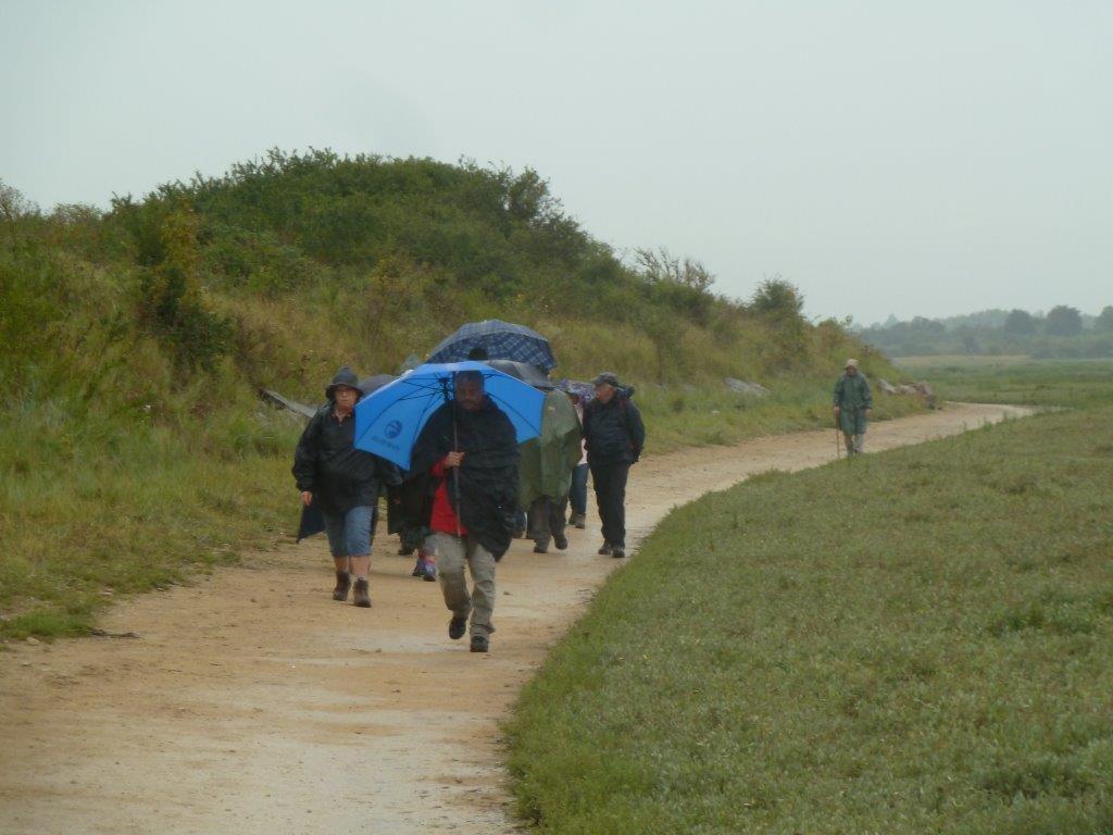 La randonnée du 13 septembre à Sallenelles