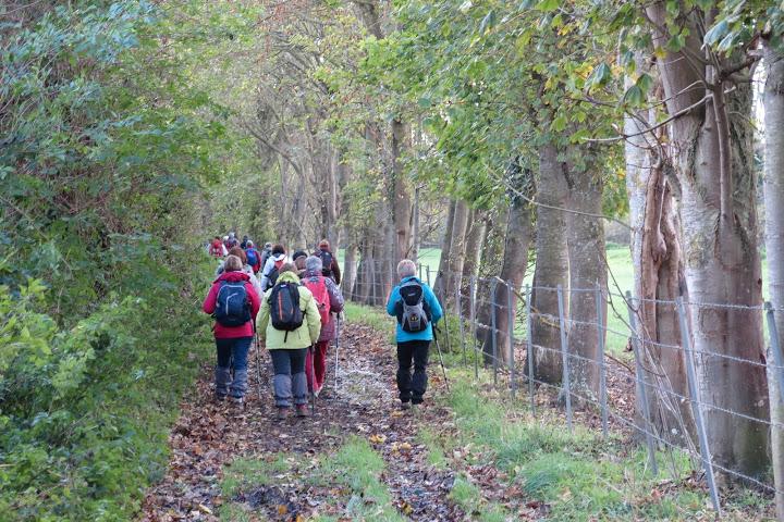 La randonnée du 22 novembre à Creully